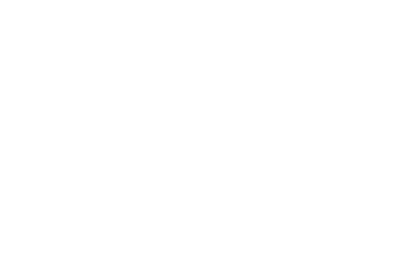 Nature's Pace Logo